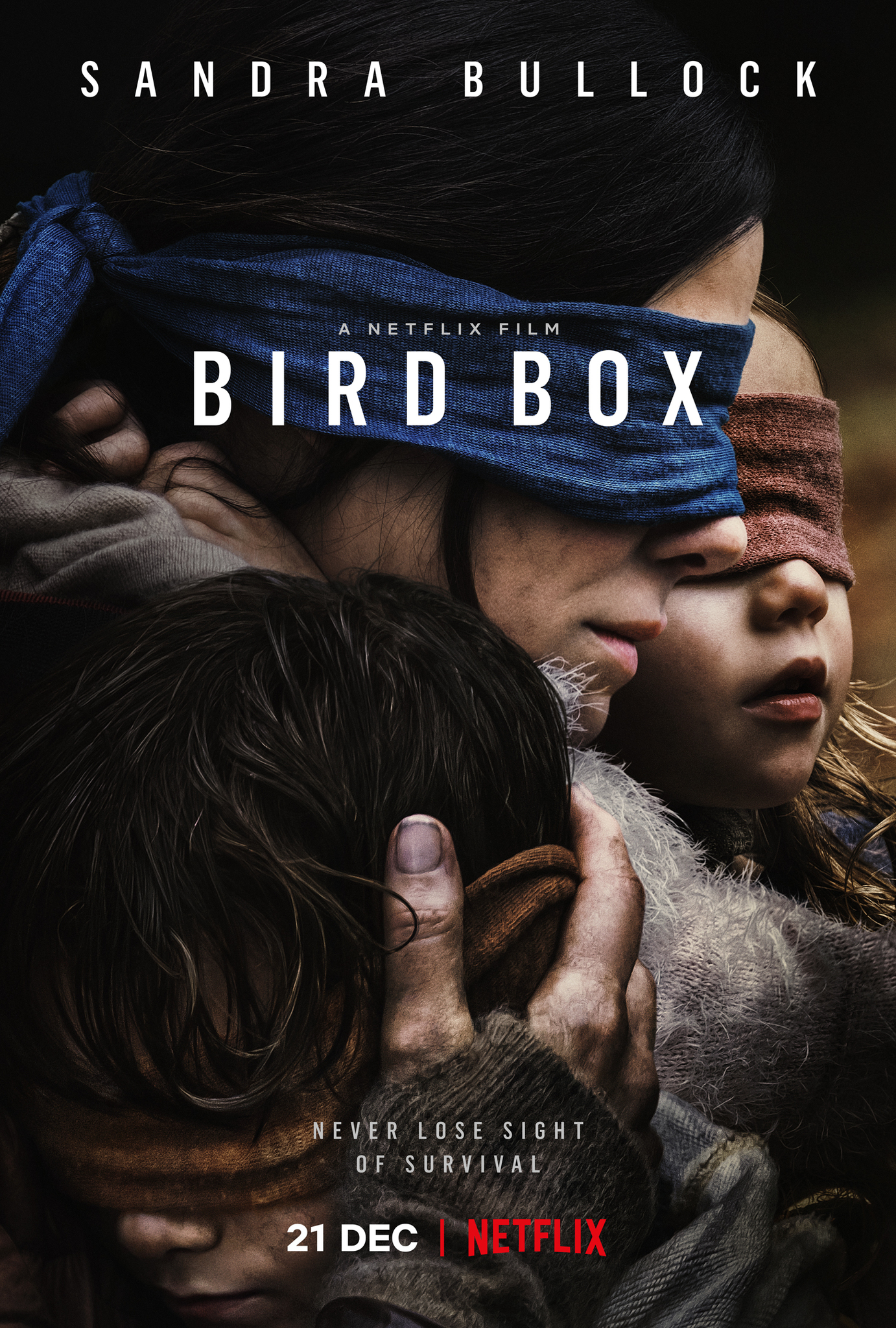 Netflix: The Bird Box